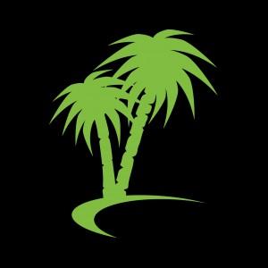 Abrakebabra Palm